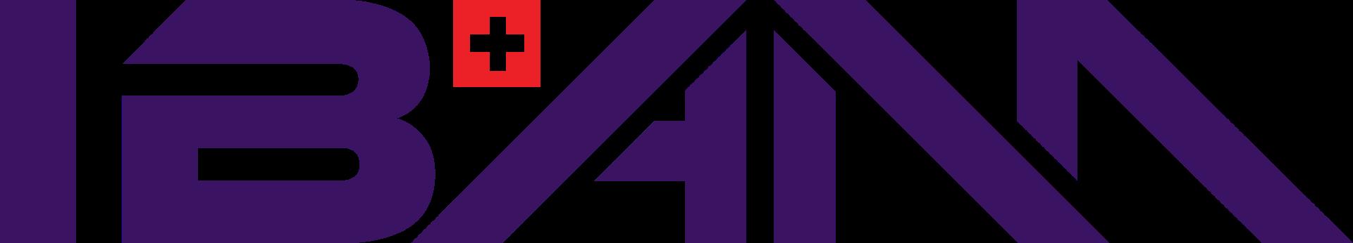 Logo NTN IBAM